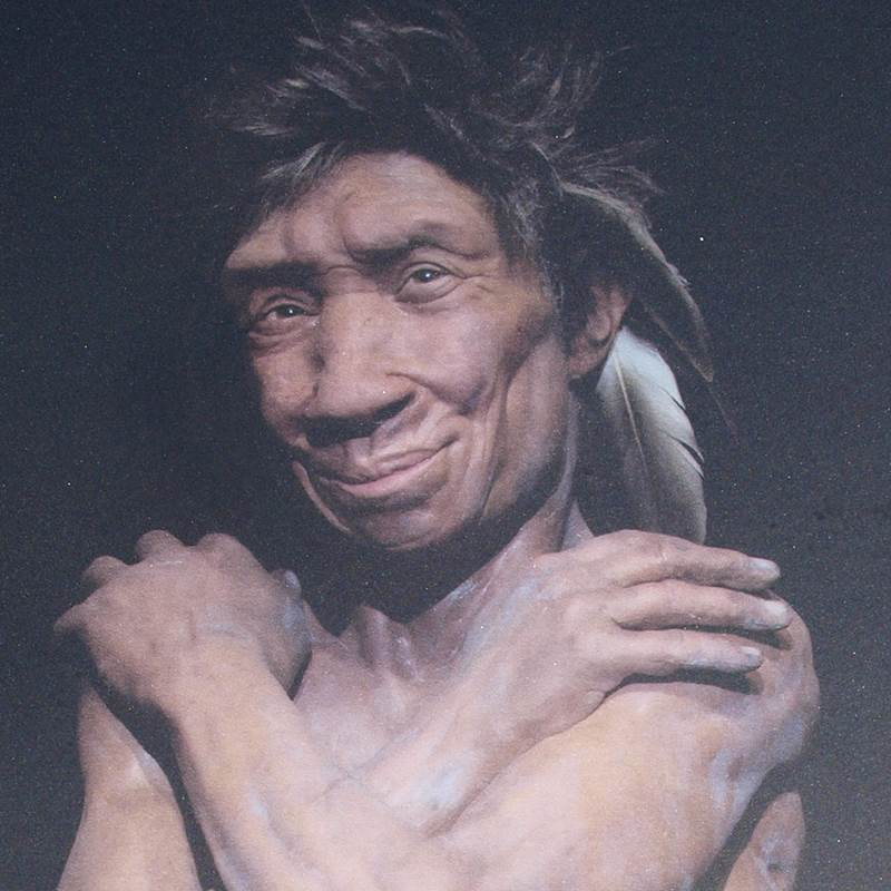 Computer Generated Image of Neanderthal Woman