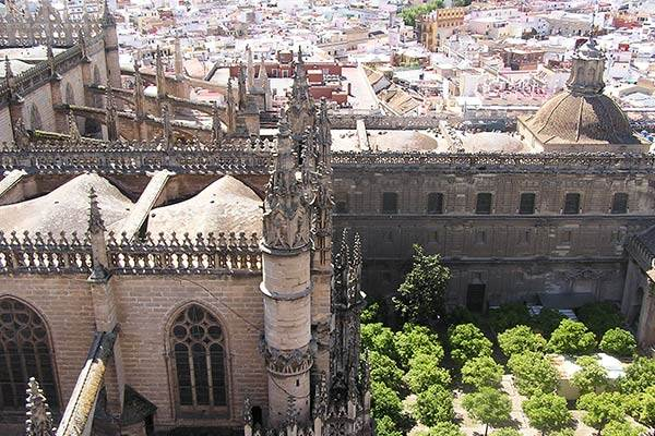 Seville Cathedral View