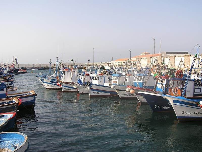 Tarifa Fishing Harbour