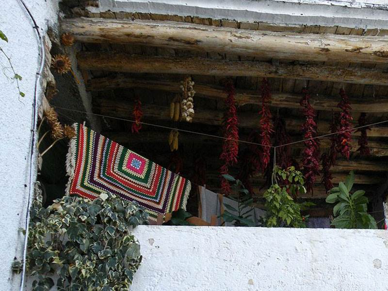 Drying peppers, tomatoes and garlic for the winter